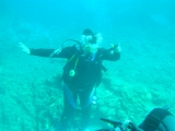Diving Pictures
